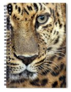 A Thing Of Beauty Spiral Notebook