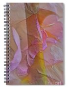 A Thorn's Beauty Spiral Notebook