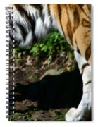 A Tigers Stride Spiral Notebook