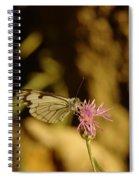 A Tilting Butterfly  Spiral Notebook