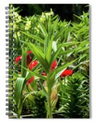 A Time To Discover Spiral Notebook