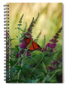 A Touch Of Orange Spiral Notebook