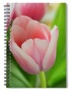 A Touch Of Spring  Spiral Notebook