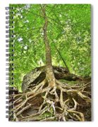 A Tree And It's Roots Spiral Notebook