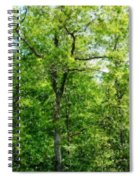 A Tree In The Woods At The Hacienda  Spiral Notebook