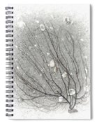 A Tree On The Beach #2 - Seaweed And Shells Spiral Notebook