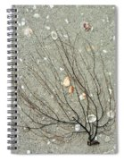 A Tree On The Beach - Sea Weed And Shells Spiral Notebook
