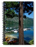 A Trees View Of Fallen Leaf Lake Spiral Notebook