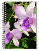 A Trio Of Pale Purple Orchids Spiral Notebook