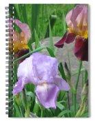 A Trios Of Irises Spiral Notebook