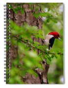 A True Red Head Spiral Notebook