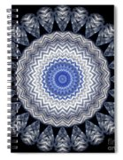 A Twist Of Silver 2 Spiral Notebook