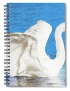 A Vision In White Spiral Notebook