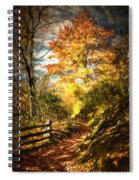 The Lighted Path Spiral Notebook
