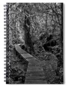 A Walk Through The Willowbrae Rainforest Black And White Spiral Notebook
