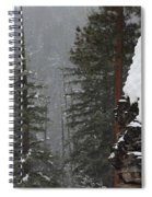 A Walk Through Winter Spiral Notebook