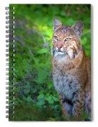 A Watchful Eye Spiral Notebook