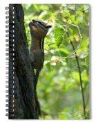 A Well Balanced Meal Spiral Notebook
