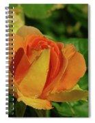 A Wet Rose  Spiral Notebook