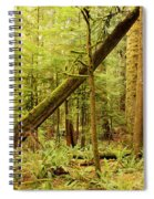 A Whisper In The Rainforest Spiral Notebook