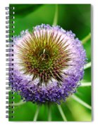 A Wild And Prickly Teasel Spiral Notebook