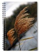 A Windy Day Spiral Notebook