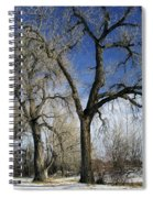 A Winter Kiss Spiral Notebook