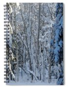 A Winter View  Spiral Notebook