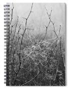 A Winter Web Spiral Notebook