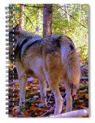 A Wolf Gazes Back Spiral Notebook
