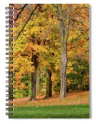 A Wonderful Walk In The Park Spiral Notebook