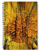 A Woody Texture Spiral Notebook