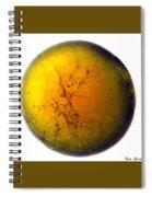A World All Its Own Spiral Notebook