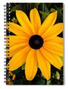 A Yellow Beauty Spiral Notebook