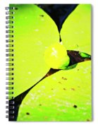 A Yellow Bud Of Waterlily Spiral Notebook