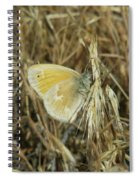 A Yellow Moth  Spiral Notebook