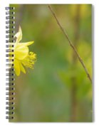 A Yellow Paradise Spiral Notebook