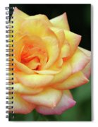 A Yellow Rose Spiral Notebook