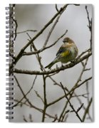 A Yellow-rumped Warbler In The Evening Spiral Notebook