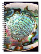 Abalone Seashell Spiral Notebook