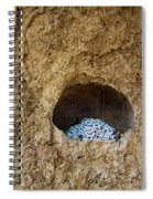 Abandoned Royal Cell Spiral Notebook