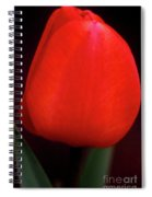 About To Bloom Spiral Notebook
