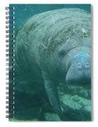 About To Meet A Manatee Spiral Notebook