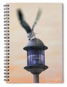About To Take Flight Spiral Notebook