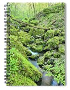 Above Moine Creek 2 Spiral Notebook