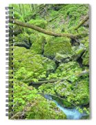 Above Moine Creek Spiral Notebook