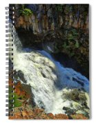 Above Undine Falls Spiral Notebook