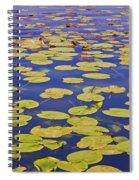 Absolutly Idyllic Spiral Notebook