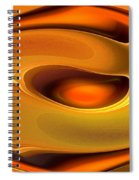 Abstrac8-15-09 Spiral Notebook