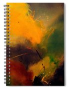 Abstract 0046521 Spiral Notebook